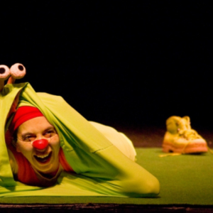 spectacle clown arbre de noel